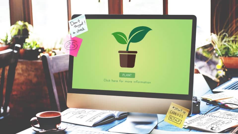 Eco conception web Mettez votre site internet au vert